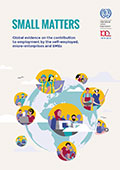ilo Report Small matters