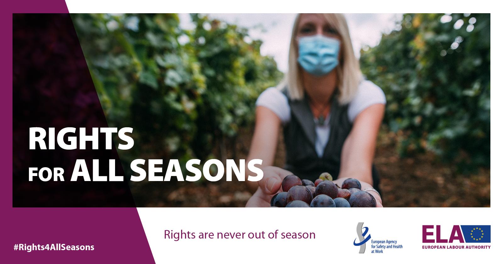 seasonal workers european labour authority